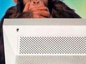 [Joke] Monkey programmers consultants