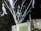 L'arbre voeux fagacéens