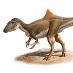 Concavenator corcovatus, nouveau dinosaure