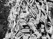 temples d'Angkor musée Cernuschi sept. janv 2010 [Exposition]