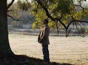 [Critique DVD] L'arbre forêt