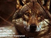 octobre, Zigouzis offre brochure loup nous enfants