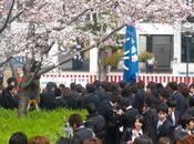 Etudier Japon
