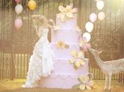 plan pour organiser mariage rêves!