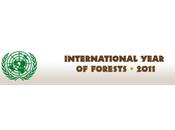 2011 proclamée Année internationale forêts l'ONU