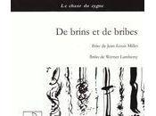 brins bribes, Werner Lambersy (par Amandine Marembert)