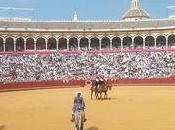 cartels seville...