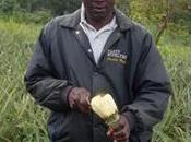 Faustin Vomewor, producteur d'ananas Togo Salon l'Agriculture