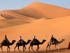 Printemps dans désert marocain
