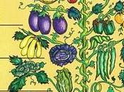 Animal, Vegetable, Miracle Barbara Kingsolver