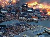 Japon nous donne leçon résilience