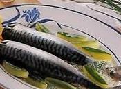 Maquereaux concombre