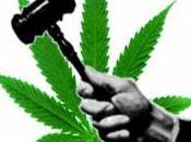 Jamaïque, bientôt décriminalisation cannabis?