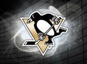 Theme Windows Penguins 2011