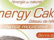 L'energy Cake Cacao Bio, gâteau l'effort.
