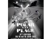 9eme Festival Polar plage
