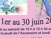 Exposition Beaujolais Fleurie (69)