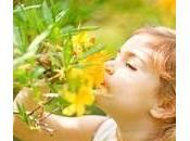 Acné, psoriasis, eczéma… Soigner problèmes peau grâce plantes
