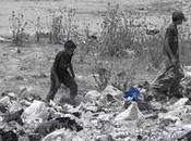 Bienvenue Palestine suite