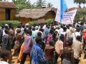 Exploitation forestière violences République Démocratique Congo