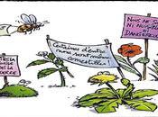 Réhabilitons mauvaises herbes...!