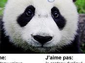 Impact Google Panda sites e-tourisme France