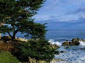 Belle nature Californie Photos