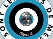 Cour Cassation donne tort Serge Grouard dans l'affaire blog Fansolo amis Chouette