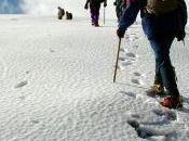 Domicilié pôle Nord