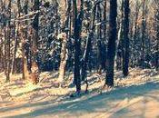 L'hiver Grise-Vallée