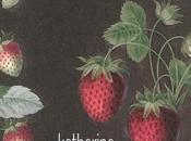 Katharina Hacker, fraises mère d'Anton, trad. l'allemand Marie-Claude Auger, Christian Bourgois