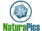 Naturapics.com communauté francophone photographie nature