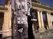 L'exposition Helmut Newton Grand Palais approuvé