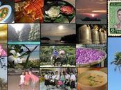 Soupe thaï Khaï