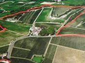 Visite-dégustation Château Mangot (Saint Emilion)