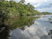 Cuyabeno exemple pour l'avenir l'Amazonie