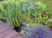 Rien qu'un jardin…