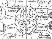 L'informatisation permet-elle traduire aujourd'hui plus vite qu'il