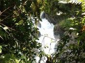 Terdav Trail World Tour: image...