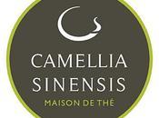 Salon Camellia Sinensis