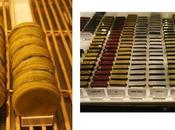 découverte Salon Chocolat 2012 macaron chocolat enrobé pate gaufre vert