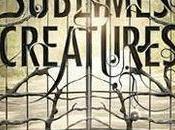 Présentation film Sublimes Creatures