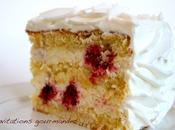 Gâteau iceberg (chocolat blanc-noix coco-framboises)
