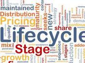 médias sociaux délinéarisé cycles traditionnels consommation