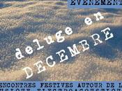 Déluge décembre rencontres festives autour musique électroacoustique groupe musiques vivantes lyon