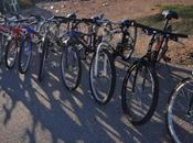 L'IMAGE JOUR Bicyclettes