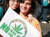 Après Suisse, Washington dépénalise marijuana