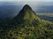 Sierra Divisor Amazonie