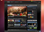 Steam pour Linux version finale disponible