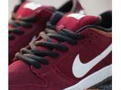 Nike Dunk Burgundy Brown White